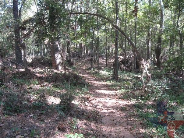 Mountainbiketx Com Trails Gulf Coast Cypress Creek