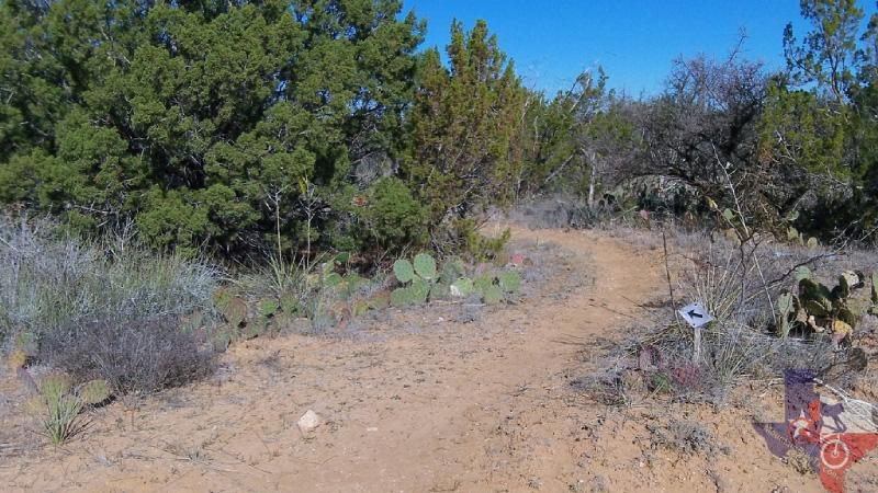 White Plains Jeep >> MountainBikeTx.com | Trails | Panhandle Plains | Middle Concho Park