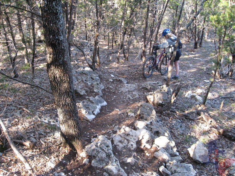 Mountainbiketx Com Trails Hill Country Pace Bend Park