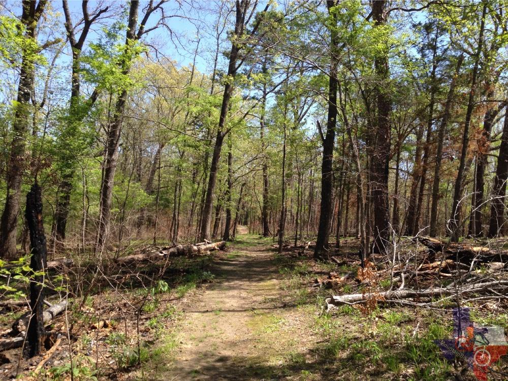 Mountainbiketx Com Trails Piney Woods Lake Bob